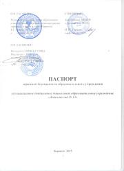 паспорт дор без-ти 2015г